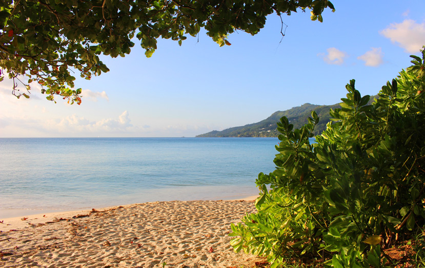 Отель The H Resort Beau Vallon Beach - пляж